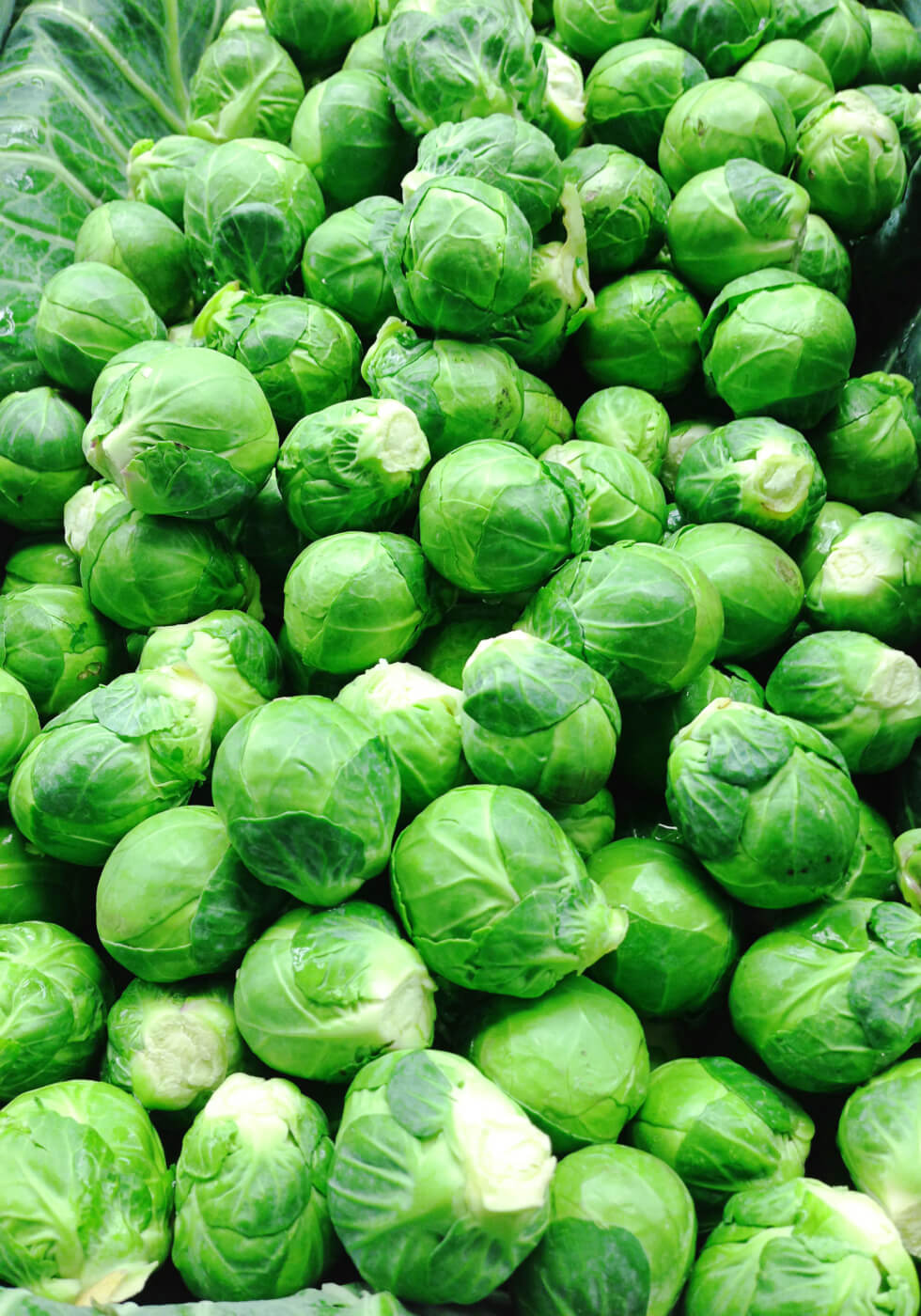 Brussels Sprouts in White Sauce