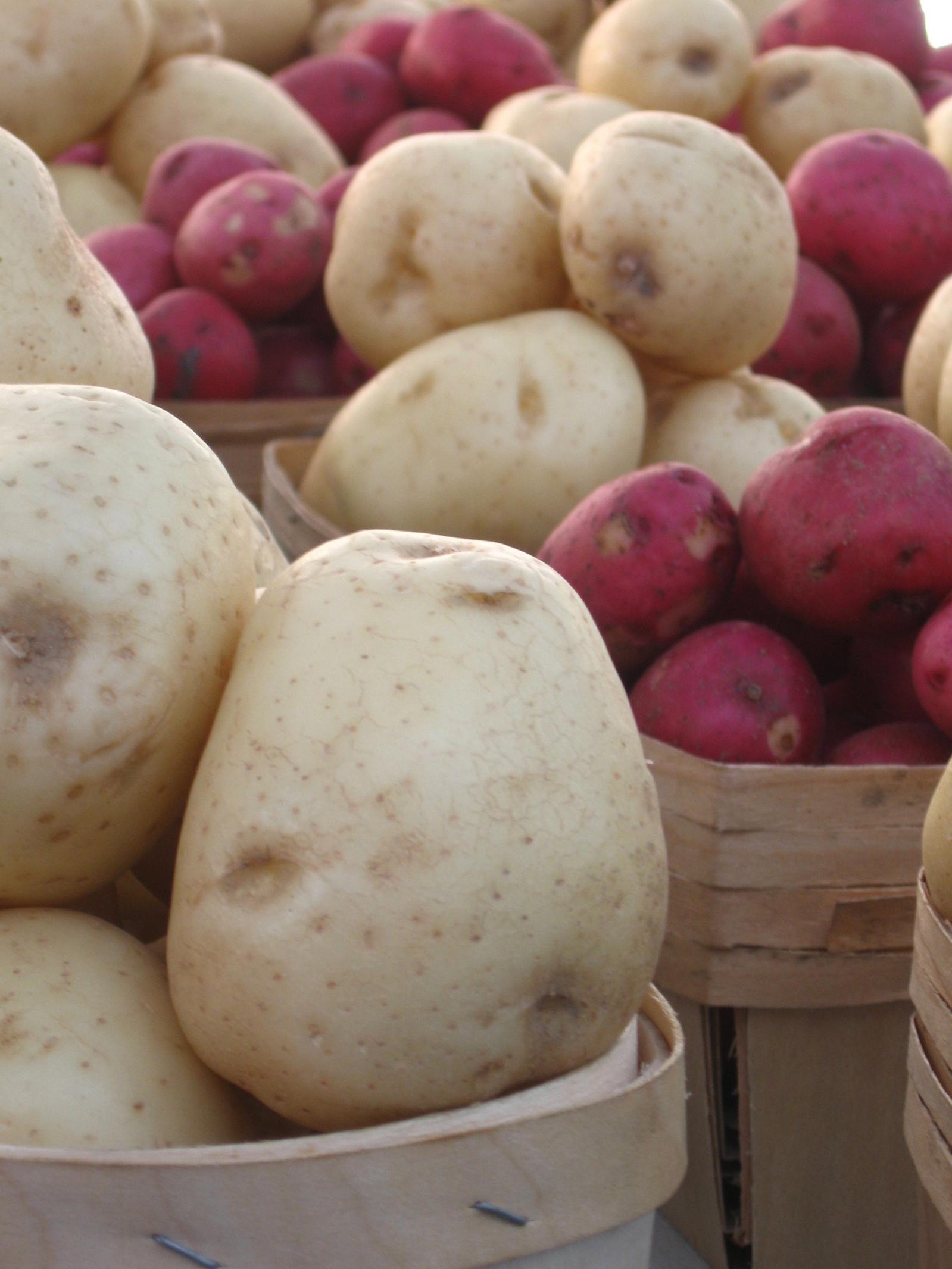 Patatas con aceite de oliva