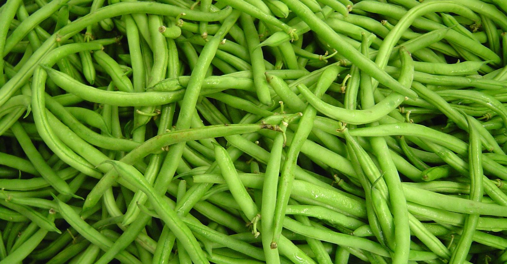 Judias verdes con almendras fundaci n dieta mediterranea - Tiempo coccion judias verdes ...