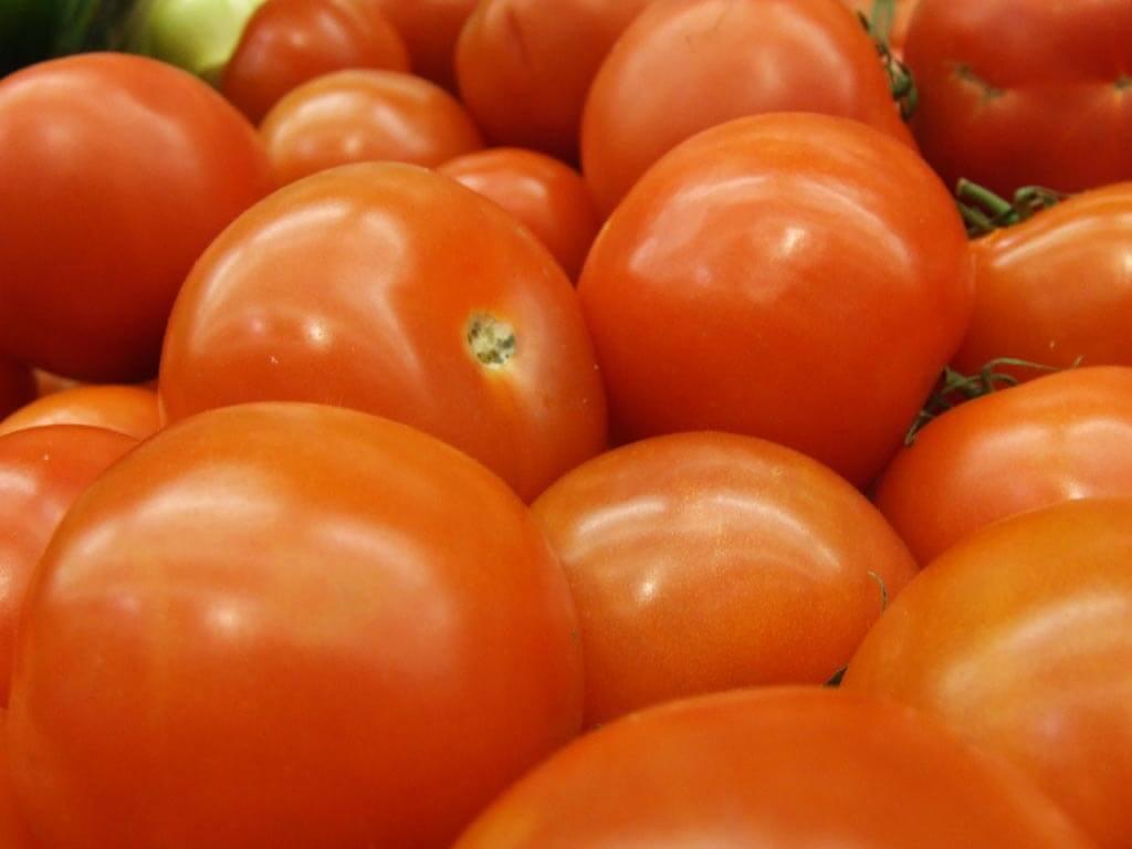 Pastel napolitano de tomate y arroz